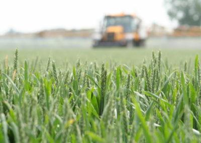 Aplicació de productes herbicides